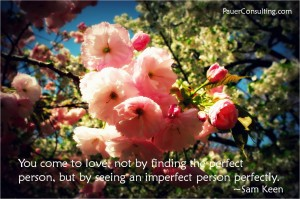 See_an_imperfect_person_perfectly_1