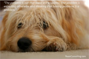 The Problem IsNot That There Are Problems